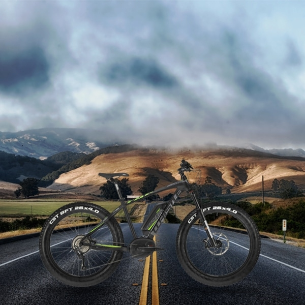 Bici elettrica quale scegliere