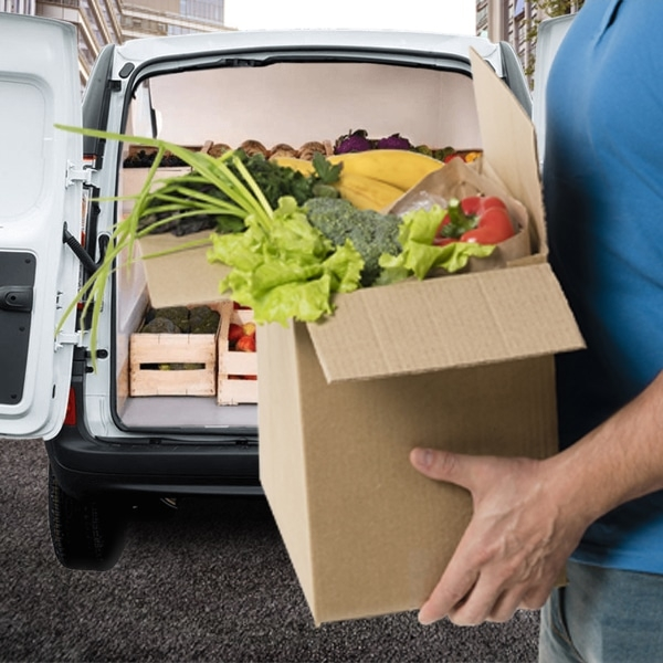 Trasporto alimenti freschi: Serve un furgone refrigerante?