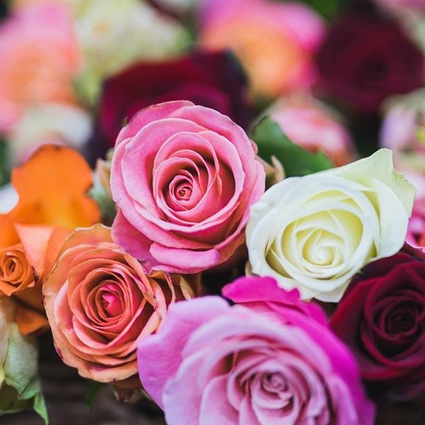 fiori freschi a domicilio