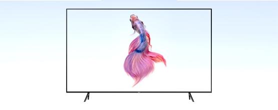 Codice sconto TV Samsung -10%